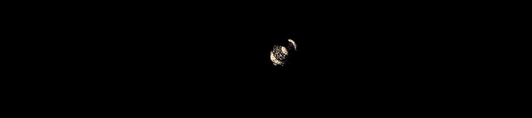 Laura Milligan Header Image 1048 x 250